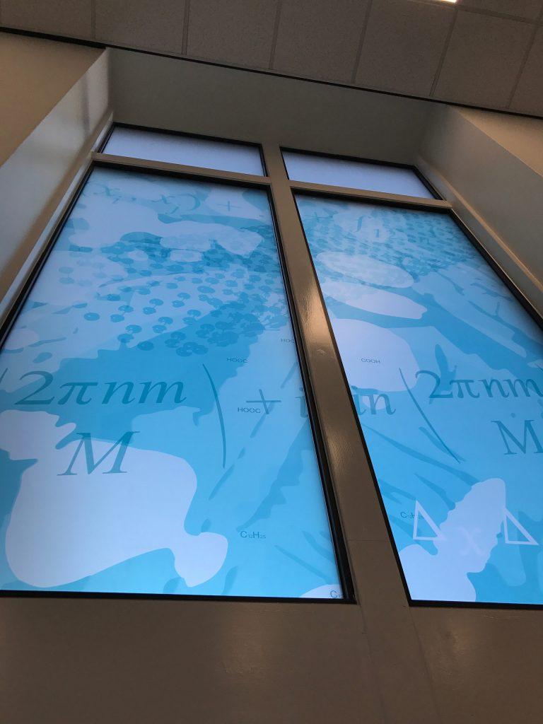 Window graphic | University of Leeds